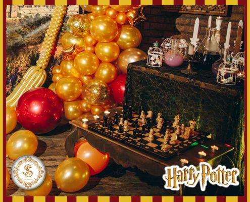 Фотозона и Декор Harry Potter